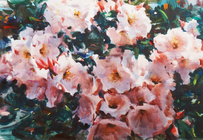 359-gishrhododendron