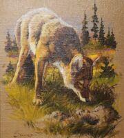 286-springerwolf