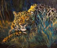 676-leewatchfulleopard
